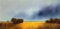 Splendid Corn by Barry Hilton -  sized 39x20 inches. Available from Whitewall Galleries